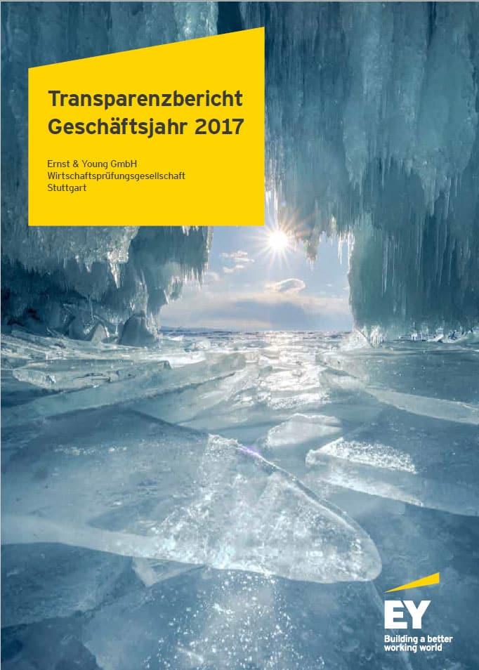 Agentur für Transparenzberichte: Design, Redaktion und Lektorat