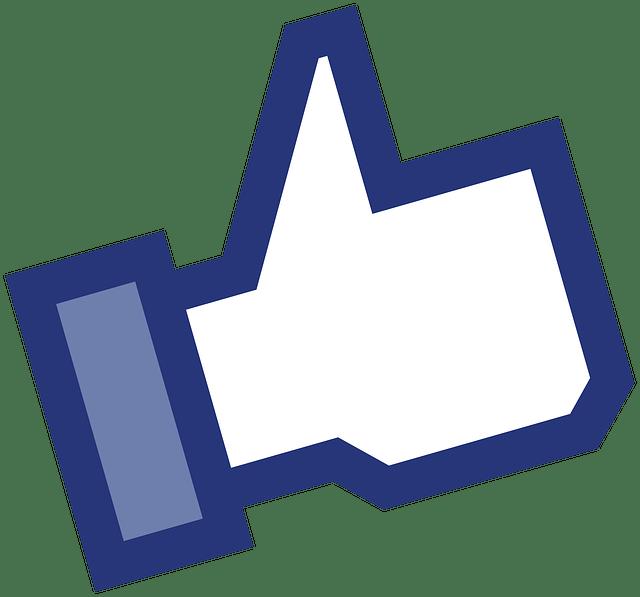 kampagne für facebook seiten