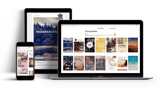 die Content-Agentur für Orangenfalter Social Media