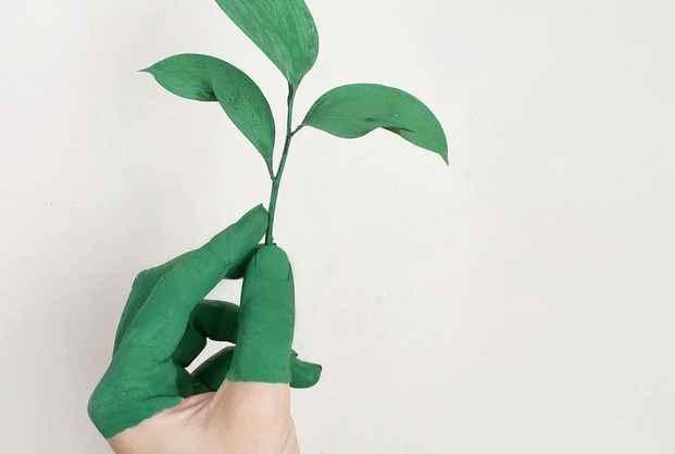 prinzipien-nachhaltigkeit